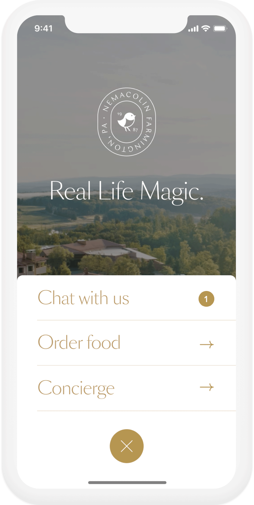image of website on a phone
